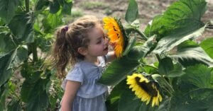 Young girl smelling yellow flowers in an East Texas field.